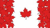 pic of canada maple leaf  - flag of Canada made of red maple leaves - JPG