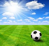 pic of playground  - Soccer ball on green grass - JPG