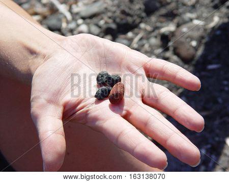 Beach Rocks In Hand Near