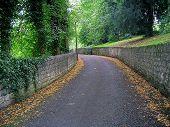 Large Country Lane