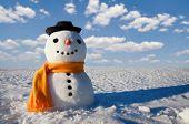 cute snowman on snowy field