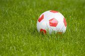 Classic soccer ball on green grass.