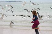 Girl Chasing Seagulls