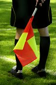 detail of a linesman holding the flag during a soccer game