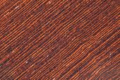 the background of wenge tropical timber