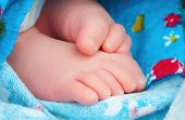 Swaddled newborn baby feet