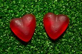 Red Hearts On Gras