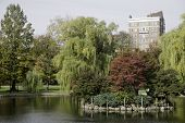 Boston Common Pond