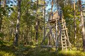 Wooden Elevated Deer Hunting Blind Hidden In A Forest. poster