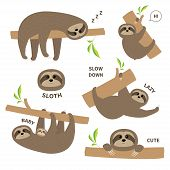 Sloth Set Mother With Baby. Cute Lazy Cartoon Kawaii Character. Fluffy Fur. Slow Down Text. Tree Bra poster