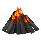Burning Fire Icon. Realistic Illustration Of Burning Fire Vector Icon For Web Design poster