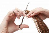 hair stylist cutting wet hair with professional scissors, beauty salon