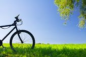 Mountain bicycle at sunny day at field