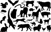 Land_Animal_Silhouettes