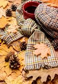 Warming Beverage. Mug Of Tea Covered Surrounded By Scarf Autumnal Background With Fallen Maple Leave poster