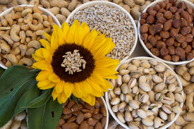 picture of mixed nut  - Mixed nuts and sunflower - JPG