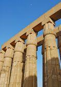 Papyrus Columns