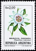 Postage stamp Argentina 1983 Blue Passion Flower, Passiflora Cae