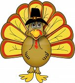 Vector Thanksgiving Turkey