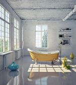 picture of penthouse  - bathtub in the loft interior  - JPG