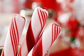 Holiday background image of peppermint candy sticks with colorful defocused background (candy jars a