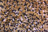 Ammunition Collage