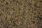 Texture Acid Pitted Limestone
