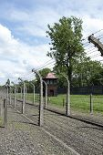 OSWIECIM - MAY 26: Barbwire fence in the former German concentration camp in Oswiecim, Poland on May