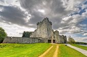 Ross Castle in der Nähe von Killarney, Co. Kerry, Irland