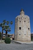 Sevilla, España - 16 de mayo: La Torre del Oro (Torre del oro) el 16 de mayo de 2013 en Sevilla, España. Una militar