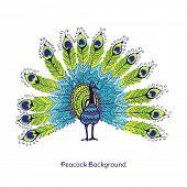 Peacock Card - in vector