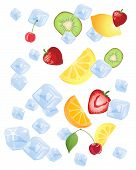 Fruit On Ice