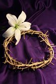 image of humility  - Crown of Thorns on a Purple Fabric with one lily and room for copy - JPG