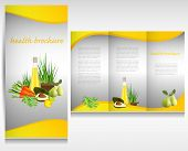 Health food brochure design. Bio vegetable and fruit. Brochure folder vector.