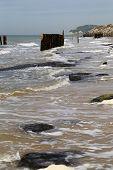 Opal Coast -