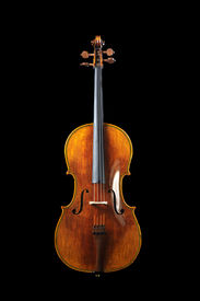 pic of musical instrument string  - beautifully wood grained cello over a black background - JPG