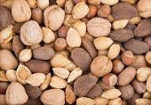 stock photo of brazil nut  - Mixed nuts background with almonds walnuts pecans hazelnuts and Brazil nuts - JPG