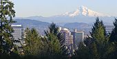 Panorama de Mt. Hood e Downtown Portland Oregon
