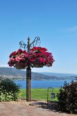 Garden in RV park by Okanagan Lake