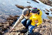 stock photo of tide  - family of father and son enjoying tide pools together - JPG