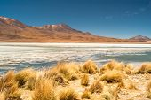 Nature In Bolivia