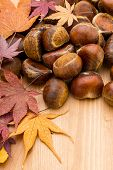 Chestnut and dry maple leave on wooden background