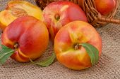 picture of peach  - ripe peach or nectarine on burlap background