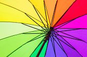 Color pattern of an umbrella