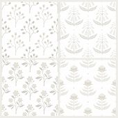 foto of no clothes  - Set of seamless monochrome patterns with Australian flora - JPG