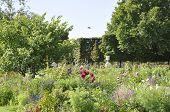 Tuilerie Gardens in Paris