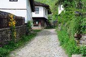 Cobbled Street In Bozhentsi Village