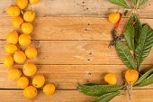 foto of loquat  - Still life with some freshly picked loquats - JPG
