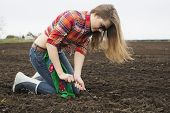 Woman Dig Up From Cultivated Black Soil