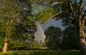 stock photo of end rainbow  - The end of the rainbow lands between the trees - JPG